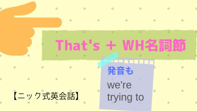 That's + WH名詞節【ニック式英会話】