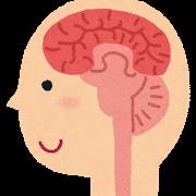 脳 セロトニン