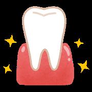 歯茎のマッサージ効果大