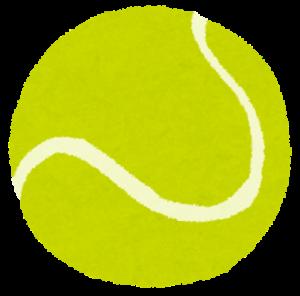 テニスの王子様 動画配信