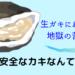 スーパーの生牡蠣にあたって地獄の苦しみ【100%安全ではない!】